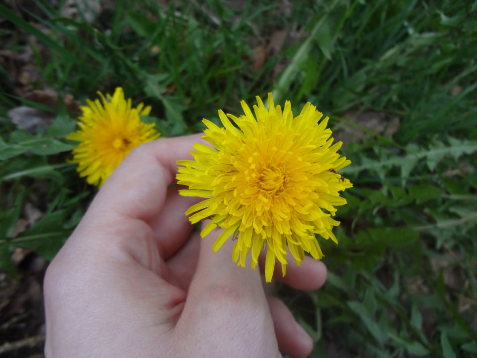 Eltern-Zeitschrift und Blogliebling: Auch andere Kinder mögen keine Nähe