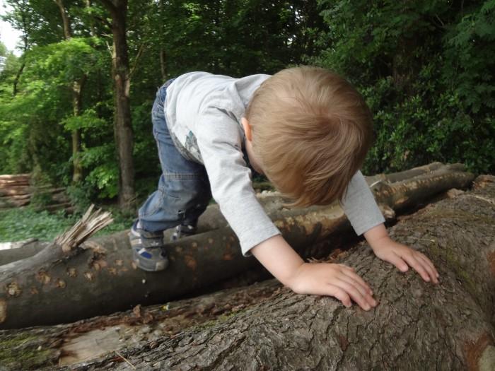5 Dinge, mit denen mich meine Kinder verblüffen